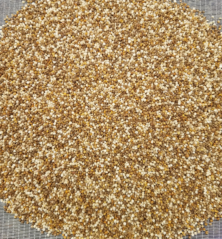 Incred Mix (Quinoa)
