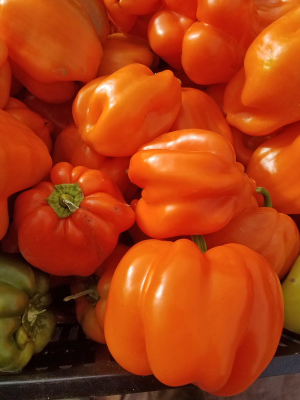 Pleated Tangerine (Peppers)